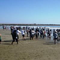 大洗海岸の地引網