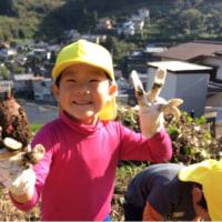 ☆芋掘り☆