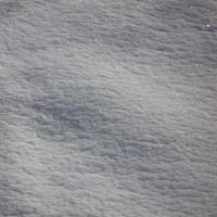 予報の通り激しい雪となりました。