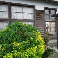 天竜浜名湖鉄道は桜木駅付近の風景 初夏編(2017年5月)
