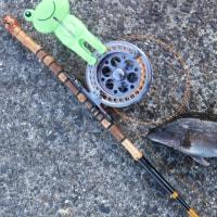 カンダイ釣りたーい。