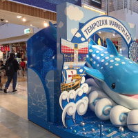 大阪「海遊館」入場チケット購入に1時間、でも裏技があった!