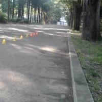 早朝インライン 久しぶりの鶴間公園5/21