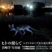 宮崎学 ヒトの傍らで シナントロープから見た世界 大阪ニコンサロン
