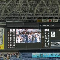 阪神タイガース応援観戦記 2017-3 (久しぶりの野球観戦、快勝です!)