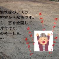 安穏(4)