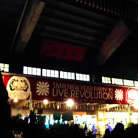 【T.M.R.NEW YEAR PARTY\'10 LIVE REVOLUTION】その6