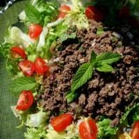 泰風 ビーフミントサラダ 筍サラダ 2種