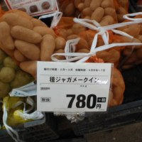 ジャガイモの種芋を購入しました
