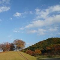 広大な山梨県曽根丘陵公園