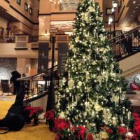 すてきなクリスマスを〜♪