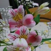 蕾から花に