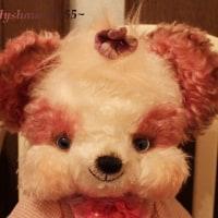 PINKのパンダぷくちゃん(●^o^●)お届けしました♪…lovely~♪