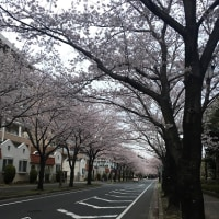 4月13日の練習 ~ 桜台センター視聴覚室