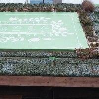 梅田・グランフロント庭園~春景色