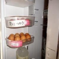 卵ポケット