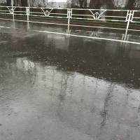 雨の金曜日♪