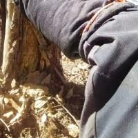 手作り林業小物