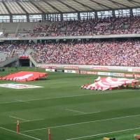 ラグビー観戦日本代表戦
