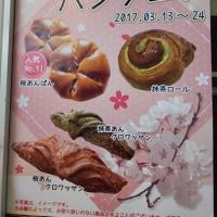 桜と抹茶のパンフェアでした~(^O^)/