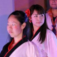 桜樹 the LIVE