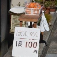 東海道(由比宿)
