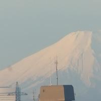 横浜 そごうにて 大賀様の個展でゲット。