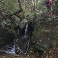 秋の行楽・Ⅱ・宝篋山トレッキング