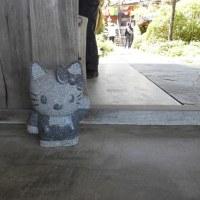 アズキさんkikiさん(/・ω・)/藤を、見に来ました。