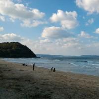 海辺に集う人々