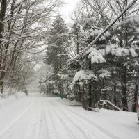 雪の予感!