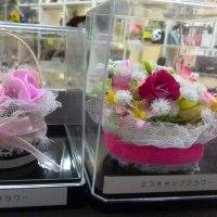 今日の気になる・・・☆レンタルボックスショップ☆フリマボックス東神奈川店☆