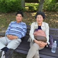 もうやり直せないのかなぁ・・・ I really wish that my dad and mom get together again.....