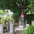 西武鉄道 街並みウォーク 智光山公園を訪ね都市緑化植物園のバラ園を歩く!