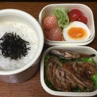 きょうのお弁当 3/21(17)