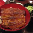 今日は「土用丑の日」~~鰻を食おう~!