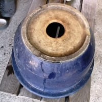 植木鉢の底穴をふさいでスイレン鉢にする