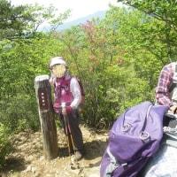 真夏日と言われている今日備前楯山に避暑のようなハイキングをして来ました