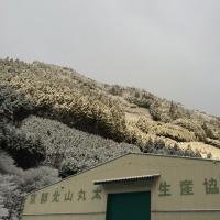 仕事納めは雪景色になりました。
