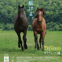 ��Ȭ�ͻԾ�2016(Hachinohe Sale��1��)�ۤΡ־��ͽ���ϡפ�ȯɽ!(43Ƭ)