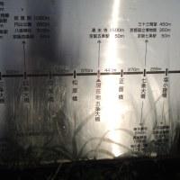 鴨川トレキング 2016.04.12 「269」