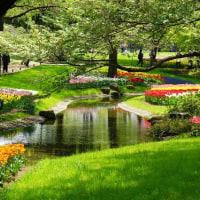 昭和記念公園が色彩の豊かな季節になりました その5