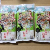 ふるさと納税~山形県天童市の桃