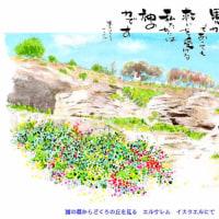 園 の 墓 エルサレム 聖書の旅イスラエル