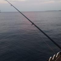 またもや、、釣りは惨敗だが、便利なコンビニがうれしい