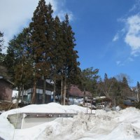 積雪期の唐松岳 - 強風の中ついに素人ヤマノボラー最高の絶景を堪能
