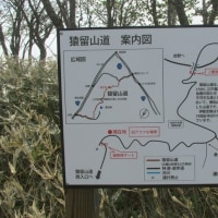 猿留山道に行ってきました。