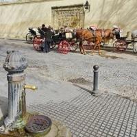 芸術のスペイン、オッサンの一人旅…Cordobaその3(シェリー最高)