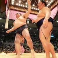 「稀勢の里、高安が7連勝、1敗で照ノ富士ら 春場所」とのニュースっす。
