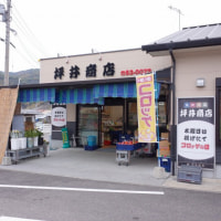 坪井商店のコロッケを買いました